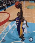 Ron Artest 2009-10 Action art print